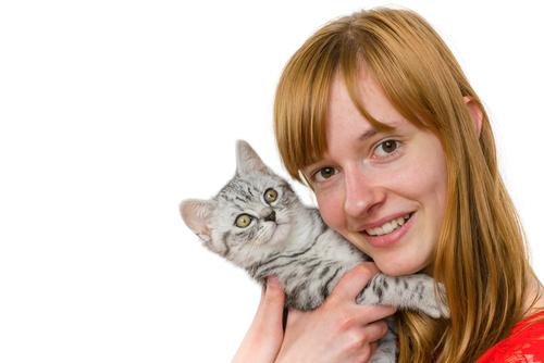Os dentes podem te ajudar a saber a idade do seu gato