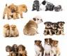 cachorros-inquietos