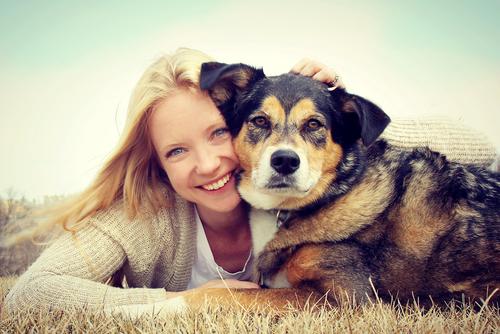 Cachorro fede por infecções na pele