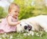cachorro-com-menina