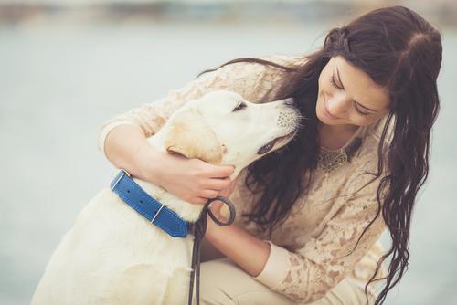 Cães que podem detectar o câncer