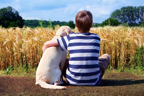 Crianças e filhotes, uma linda amizade