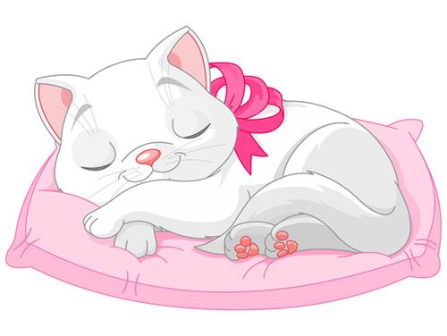 gato-com-almofada