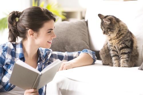 Os gatos preferem as vozes femininas