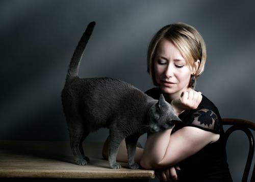 Os gatos e seus comportamentos