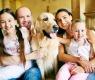 cães-com-família