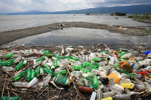 Ilha de lixo no oceano