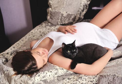 Como preparar o gato para a chegada do bebê