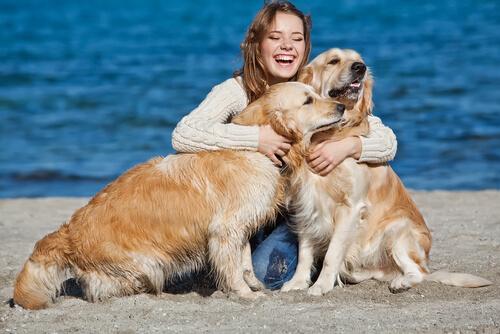 A felicidade ao lado dos cães