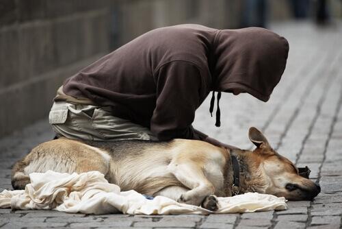 Cães e mendigos