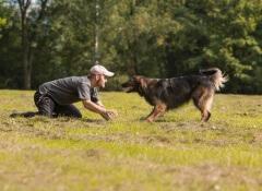 cão-brincando-homem