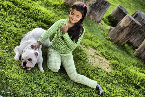 Cães e crianças: Cão resgata menina de três anos
