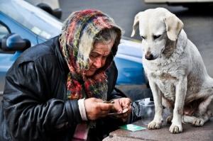 Cães e mendigos: Um problema nas grandes cidades