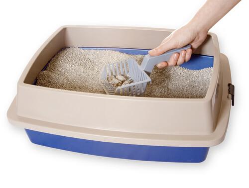Limpando a caixa de areia