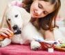 escovar-os-dentes-do-cão