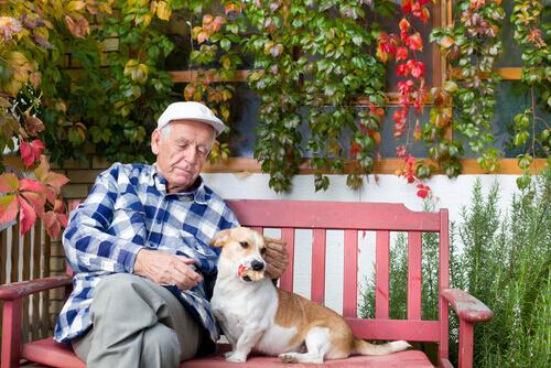 O uso de cães em terapia para idosos