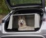 segurança-no-carro