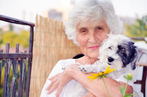 Cão e idosa