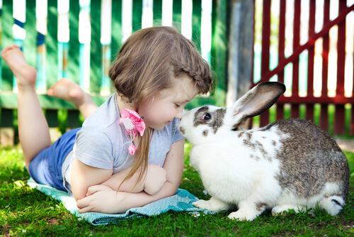 Criança com coelho