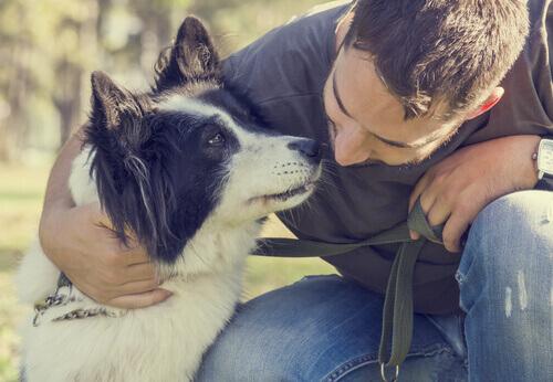 Cão e dono