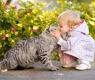 As crianças podem aprender com os gatos