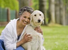 Adotar cachorros para idosos