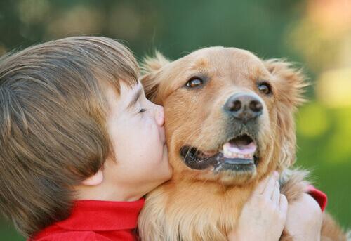 Criança beijando cão