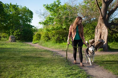 Dona passeando com cão