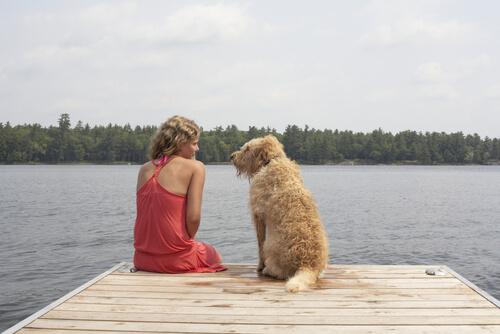Mulher e cão sentados