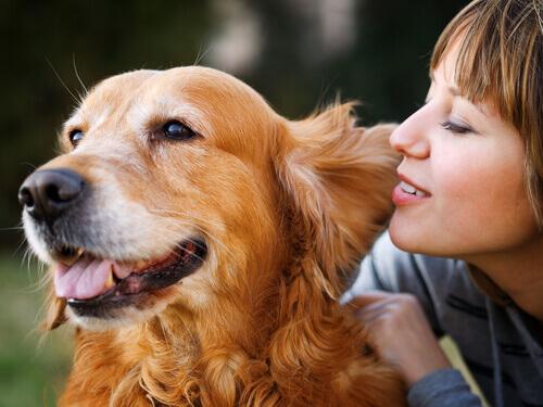 Dona abraçando cão