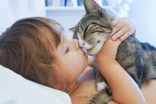Criança beijando gato