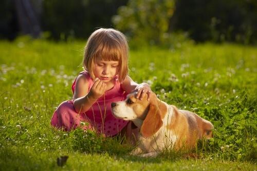 Menina com beagle