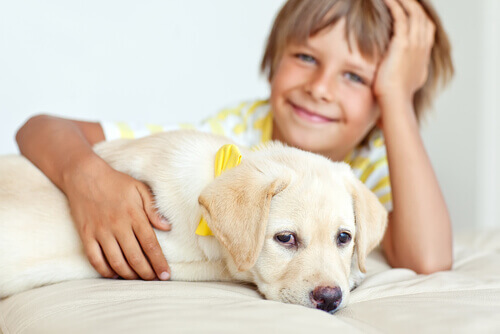 O cão é o melhor amigo das crianças