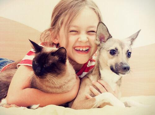 Criança abraçando gato e cachorro