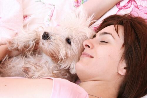 Cachorro dormindo com mulher