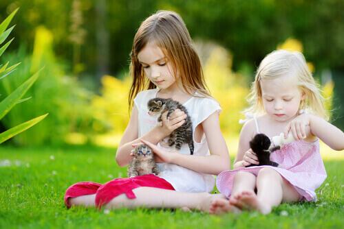 O que um bicho de estimação ensina aos seus filhos