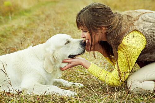Cão com sua dona
