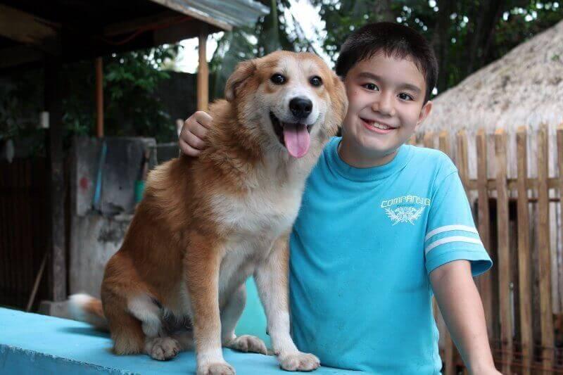 Ken com cachorro