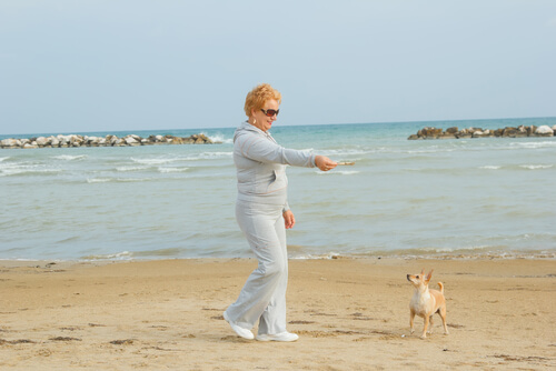 Mulher brincando com cachorro na praia