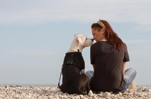 Mulher beijando cão