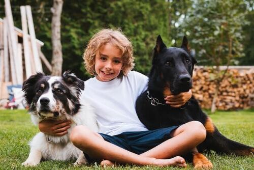 cães-e-crianças