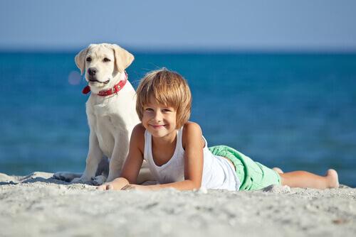 cão-e-criança