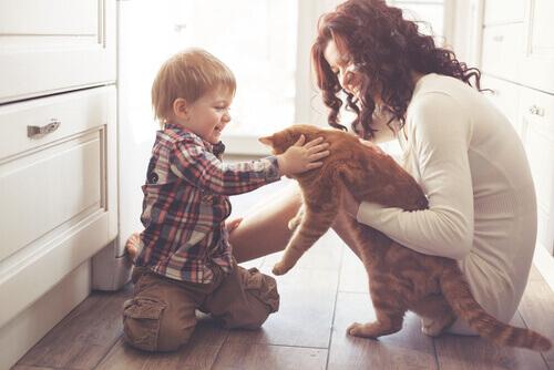 Como ajudar as crianças a superar a morte dos animais