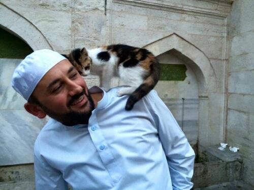Árabe de Istambul