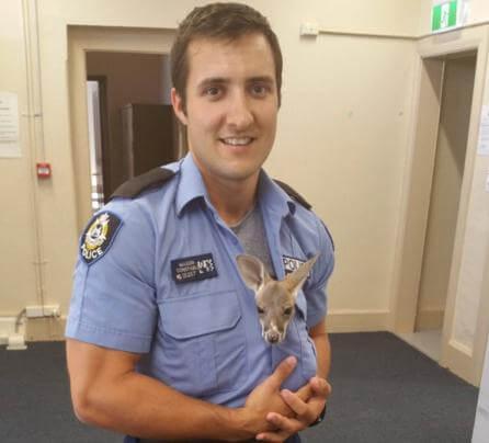 Policial com filhote de canguru