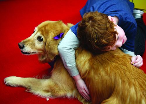 Benefícios emocionais da assistência com animais