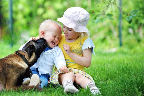 cão-e-crianças