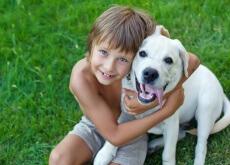 Ter um cão ajuda a controlar a ansiedade