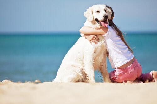 Menina abraçando cachorro na praia