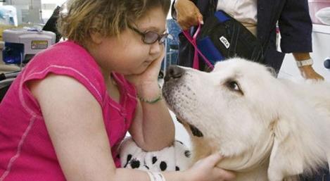 Criança em hospital com cachorro
